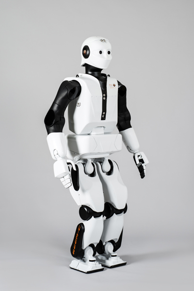 Copy our robots https online forex master robots