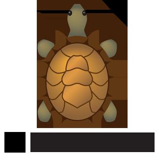 B-turtle